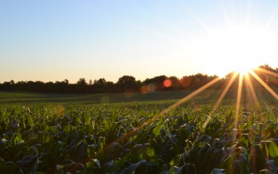 Safely Sell Farmland | Lessons Learned Through The Years