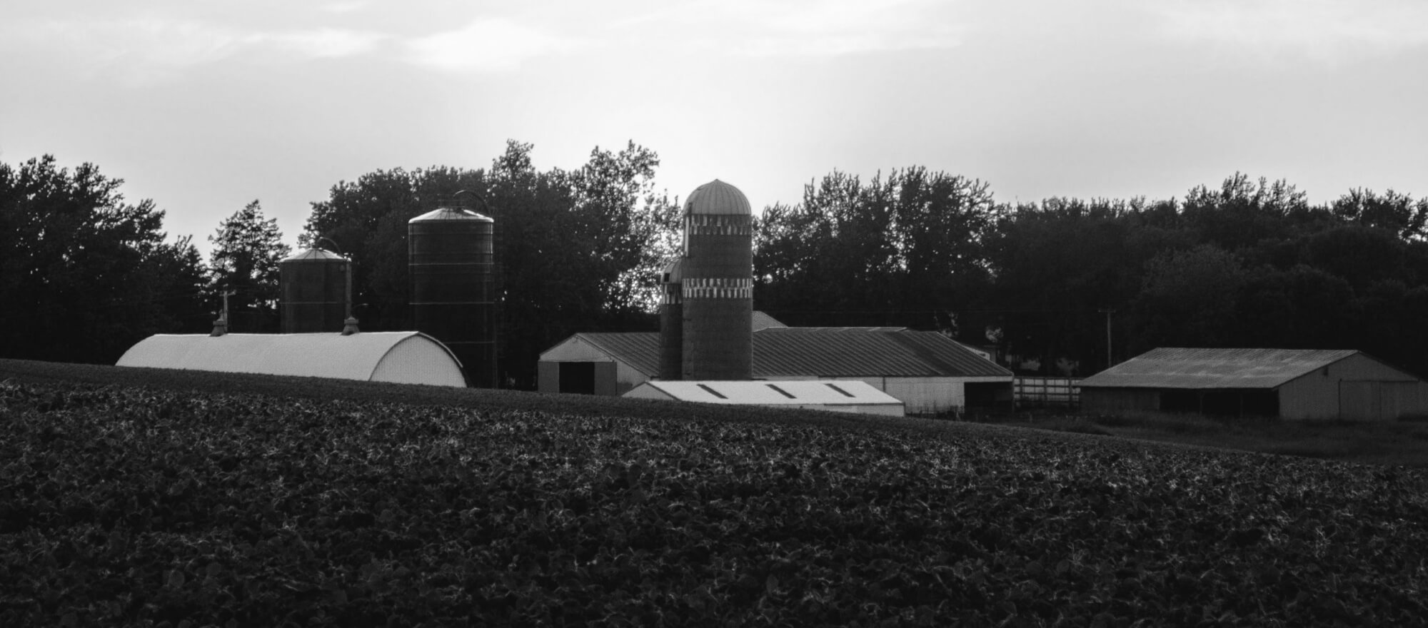 Panoramic photo of a farm with silos.