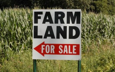 Farmland For Sale By Owner – How Does It Work?