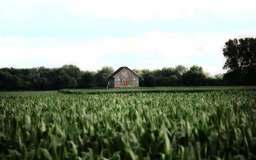 Iowa's Farm Tenancy Termination