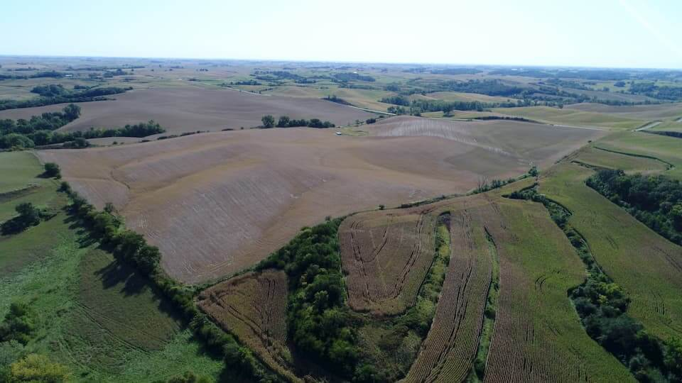 Iowa Farmland Auction – Monona County