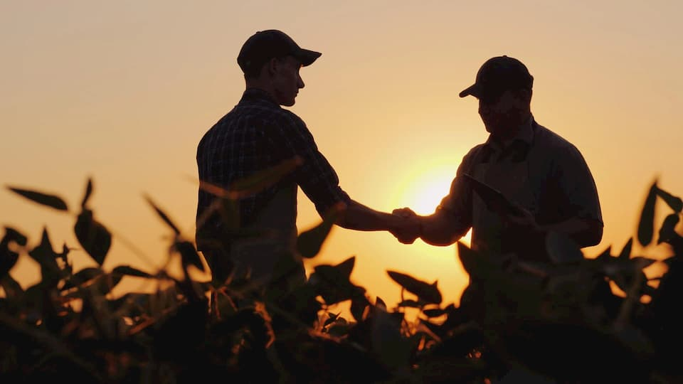 Two men shake hands as the sun sets behind them in a field.