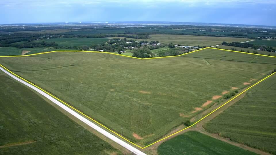 A plot of farmland for sale