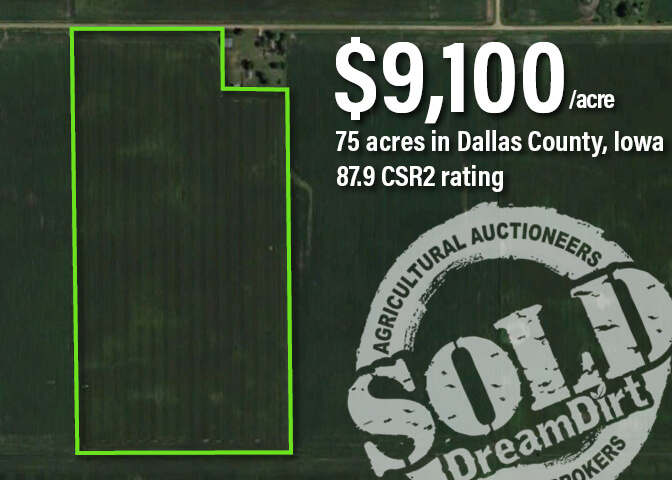Aerial view showing Dallas County land value sold at auction.
